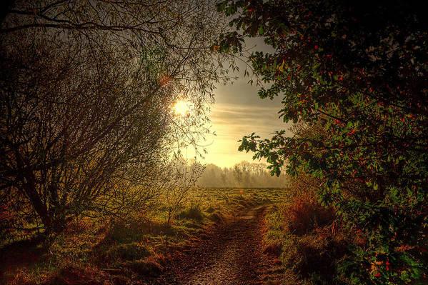 Autumn Art Print featuring the photograph Autumn Mist by Kim Shatwell-Irishphotographer