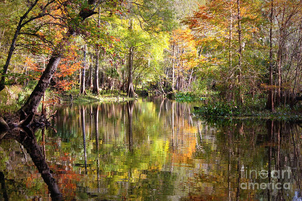 Autumn In Florida Print featuring the photograph Autumn Reflection On Florida River by Carol Groenen