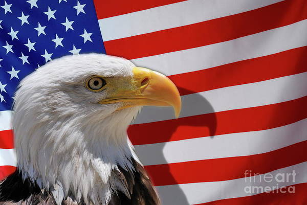 Authority Art Print featuring the photograph Bald Eagle And Us Flag by Sami Sarkis