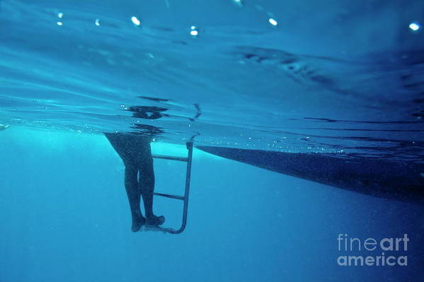 Below Art Print featuring the photograph Bare Legs Descending Underwater From The Ladder Of A Boat by Sami Sarkis