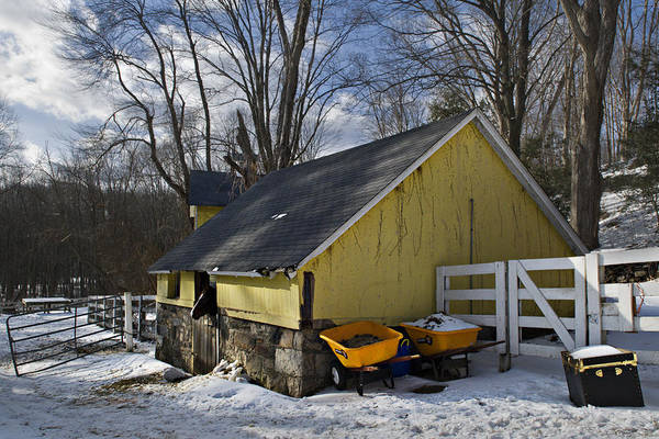 Horse Art Print featuring the photograph Barn In Winter by Jack Goldberg