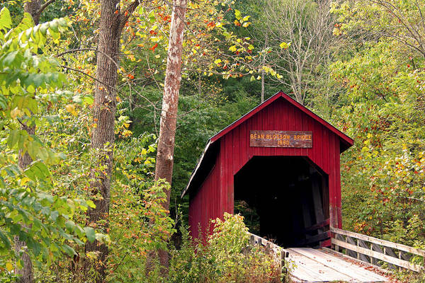Covered Bridge Art Print featuring the photograph Bean Blossom Bridge II by Margie Wildblood