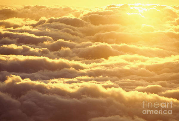 Afternoon Art Print featuring the photograph Bed Of Puffy Clouds by Carl Shaneff - Printscapes