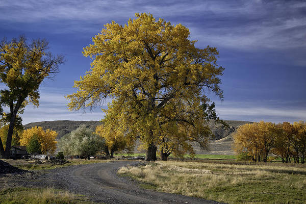 Beautiful Photos Art Print featuring the photograph Belfry Fall Landscape 5 by Roger Snyder