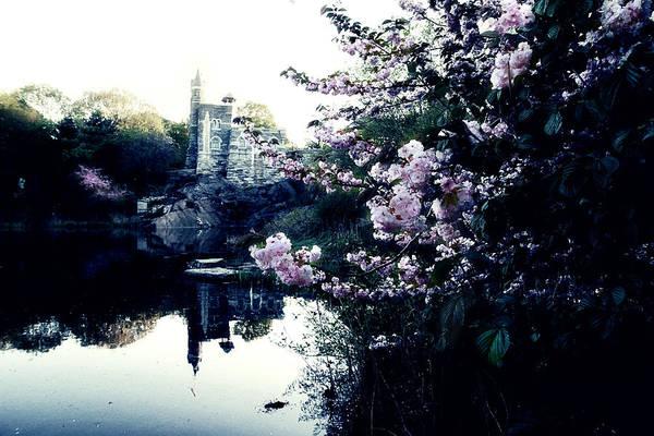 New York Art Print featuring the photograph Belvedere Castle by Ariane Moshayedi