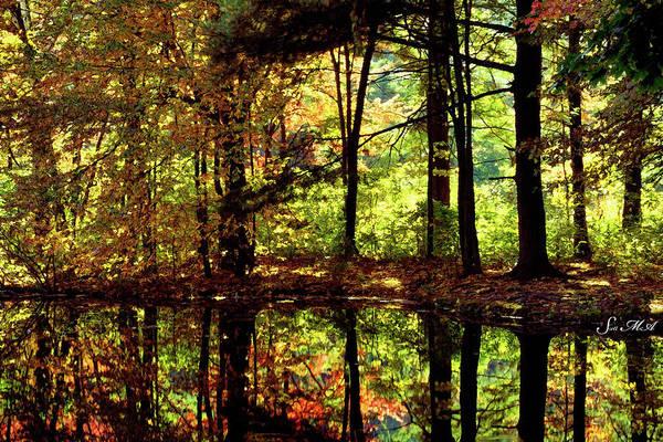 Bernharts Dam Art Print featuring the photograph Bernharts Dam Fall 006 by Scott McAllister