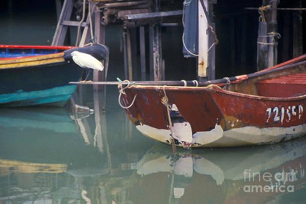 Animal Art Print featuring the photograph Bird On Boat Oar - Hong Kong by Gordon Wood