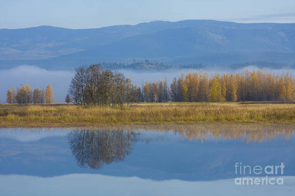 Blue Art Print featuring the photograph Blue And Gold by Idaho Scenic Images Linda Lantzy