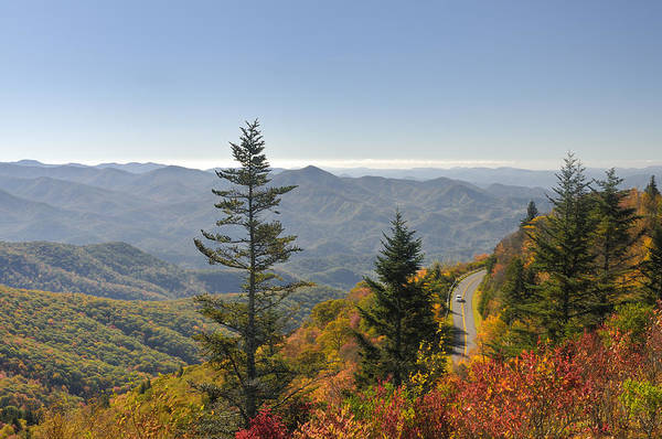 Driving Art Print featuring the photograph Blue Ridge Drive by Darrell Young