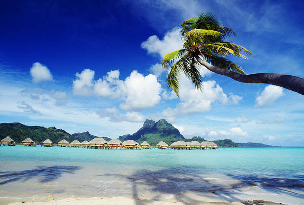 Afternoon Art Print featuring the photograph Bora Bora, Lagoon Resort by Himani - Printscapes
