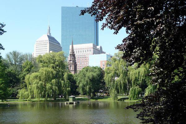 Garden Art Print featuring the photograph Boston Public Garden by Kathy Schumann