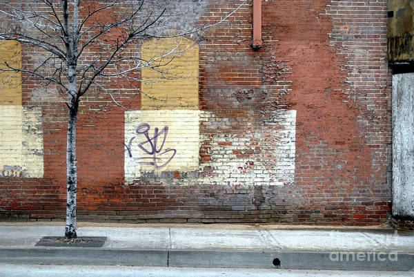 Brick Walls Art Print featuring the photograph Brick Wall 3 Of Four by Walter Oliver Neal