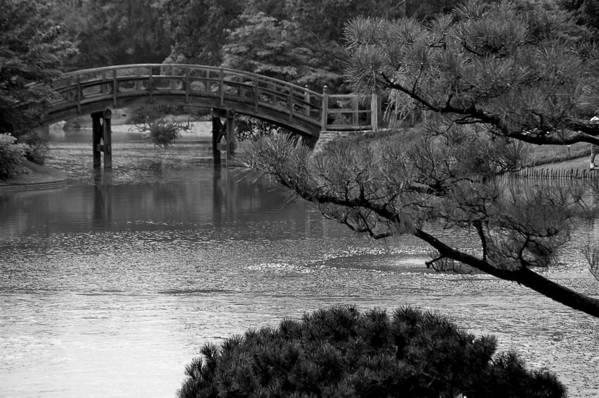 Bridge Black White Art Print featuring the photograph Bridge by Kevin Mitts
