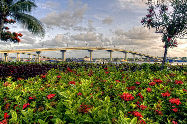 Flowers Art Print featuring the photograph Bridge To Paradise by J Charles
