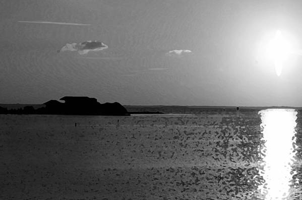 Pelican Art Print featuring the photograph Bw Sunset House by Michael Thomas