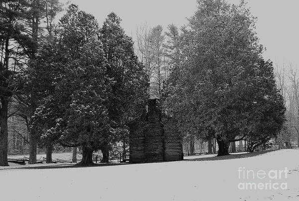 Snow Art Print featuring the photograph Cabin Between The Cedars by Eric Liller