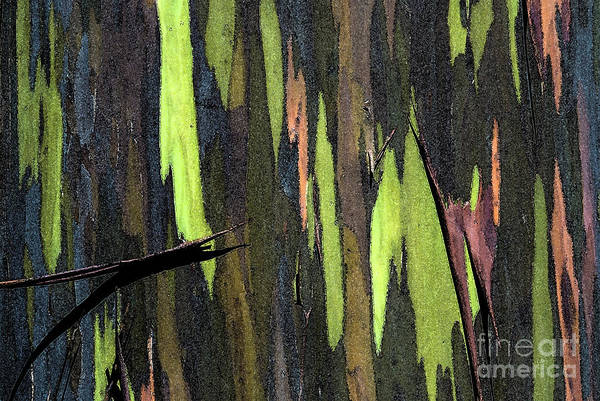 Abstract Art Print featuring the photograph Camouflage by Carl Ellis