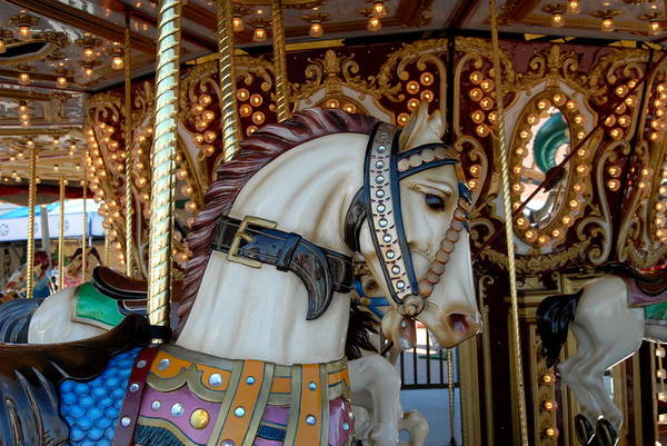 Carrousel Horse Canvas Prints Art Print featuring the photograph Carrousel 42 by Joyce StJames