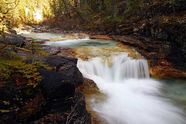 Beauty Creek Art Print featuring the photograph Cascade On Beauty Creek by Larry Ricker