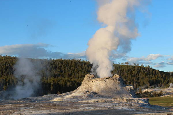 Geyser Art Print featuring the photograph Castle Geyser by John Connor Bray