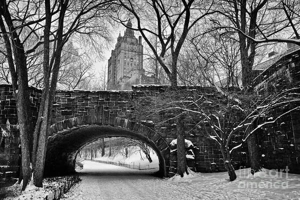 Cold Art Print featuring the photograph Central Park And The San Remo Building by John Farnan