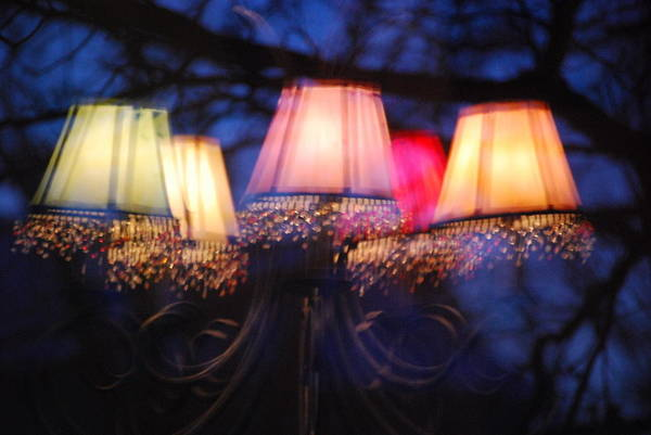 Chandelier Art Print featuring the photograph Chandelier In The Trees by Peter McIntosh