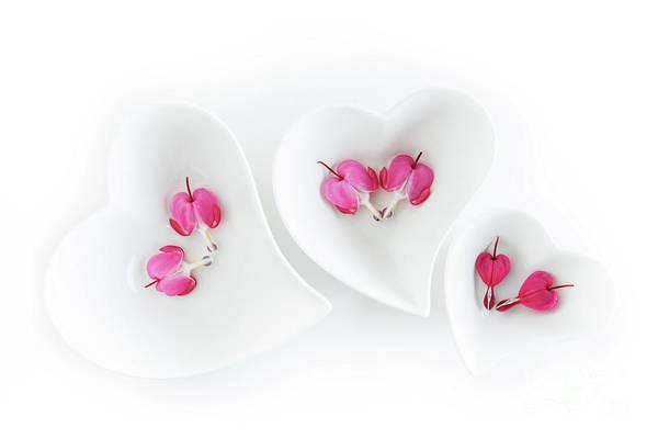Heart Shaped Dishes Art Print featuring the photograph Circle Of Love 4 by Ann Garrett