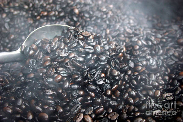 Food And Beverage Art Print featuring the photograph Coffee Beans Roasting by Balanced Art
