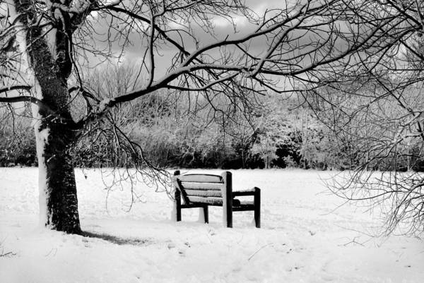 Black And White Art Print featuring the photograph Cold Seat by Terence Davis