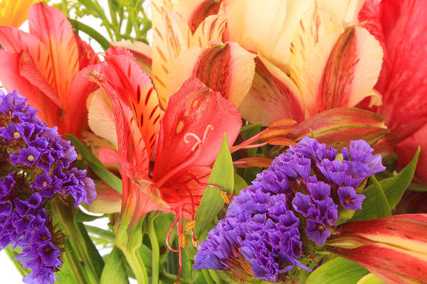 Flower Art Print featuring the photograph Colorful Bouquet Of Flowers by Robert Hamm