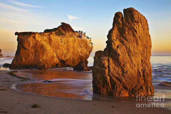 Beaches Art Print featuring the photograph Cormorant Roost Before Sundown by Greg Clure