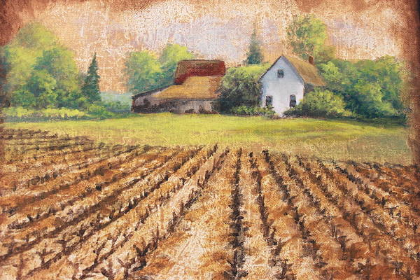 House Art Print featuring the painting Country Harvest by Diana Miller