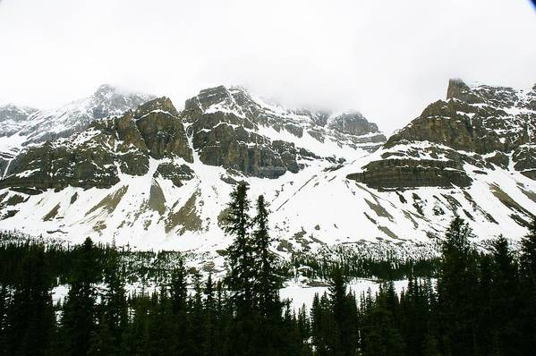 Mountains Art Print featuring the photograph Crowfoot Mountain At Bow Lake by Cynthia Cox Cottam