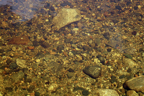 Water Art Print featuring the photograph Crystal Clear Waters by Greg DeBeck
