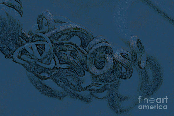 Nature Art Photography Art Print featuring the digital art Curly Swirly by Kim Henderson