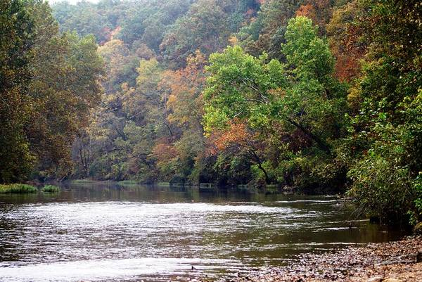 Current River Art Print featuring the photograph Current River 1 by Marty Koch