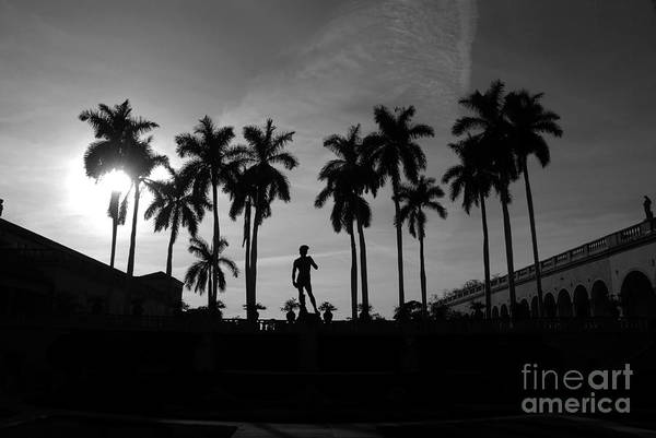David Art Print featuring the photograph David With Palms by David Lee Thompson