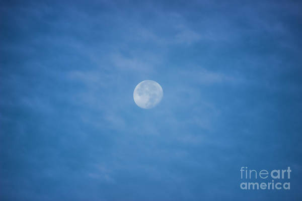 Moon Art Print featuring the photograph Daytime Moon by Roberta Byram