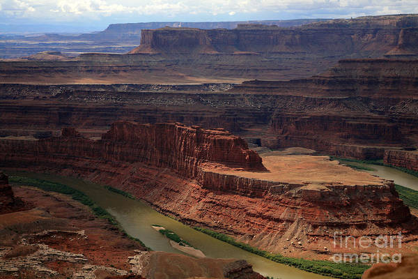 Colorado River Art Print featuring the photograph Deadhorse Point by Timothy Johnson