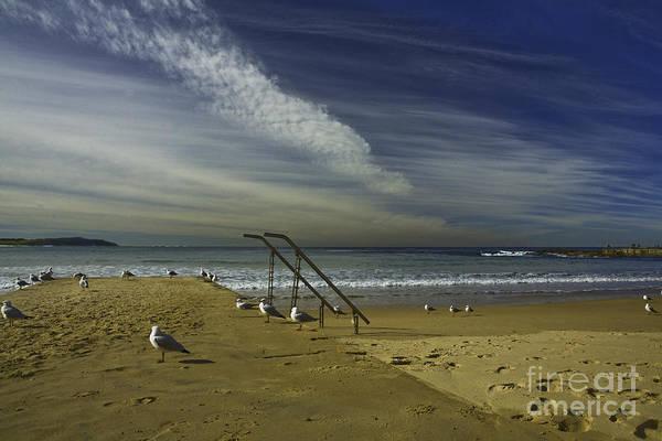 Beach Art Print featuring the photograph Dee Why Beach Sydney by Sheila Smart Fine Art Photography