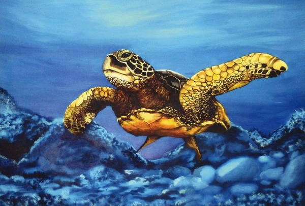 Turtle Art Print featuring the painting Deep Blue by Kathleen Kelly Thompson