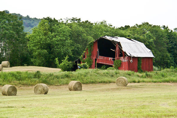 Old Art Print featuring the photograph Dilapidated Old Red Barn by Douglas Barnett