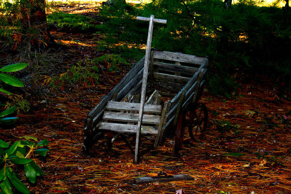 Nature Art Print featuring the photograph Dilapidated Wagon by Robert Morin