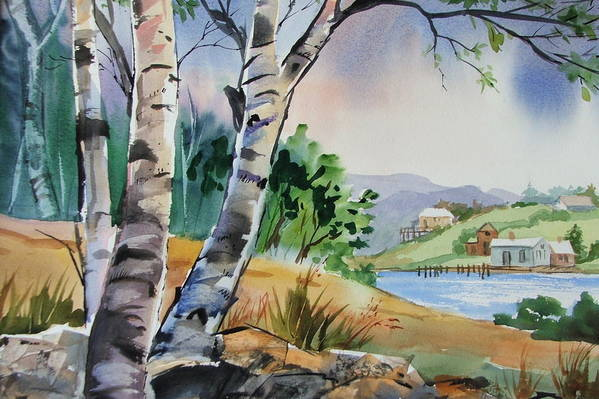 Birch Trees Art Print featuring the painting Distant View by Dianna Willman