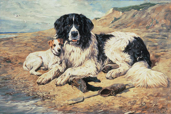 Dogs Art Print featuring the painting Dogs Watching Bathers by John Emms