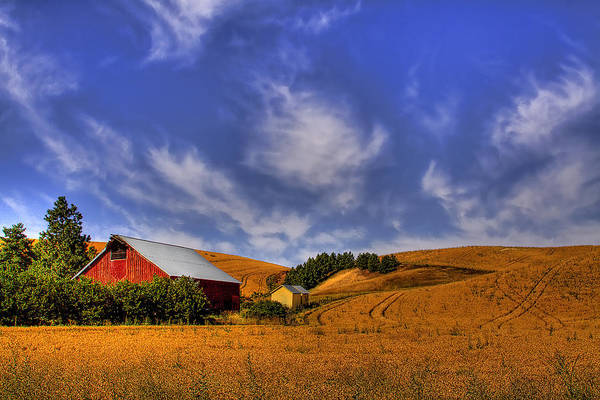 Landscape Art Print featuring the photograph Done With Harvest by David Patterson