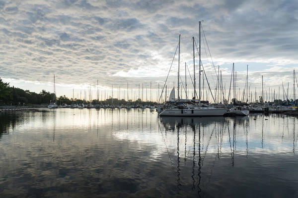 Georgia Mizuleva Art Print featuring the photograph Downy Soft Clouds At The Marina by Georgia Mizuleva