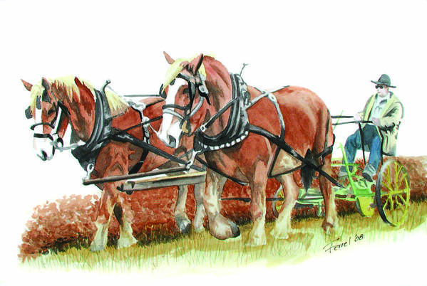 Horses Art Print featuring the painting Draft Horses by Ferrel Cordle