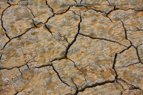 Cracks Art Print featuring the photograph Dry Cracked Lake Bed by James BO Insogna