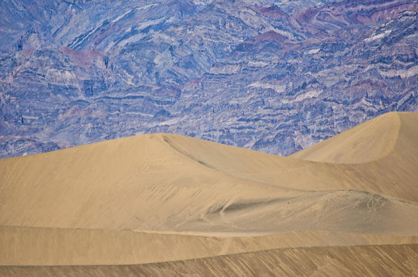 Death Valley Art Print featuring the photograph Dunes by Steven Wilson